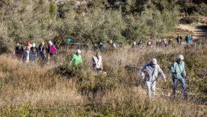 Healthy Walking - JAVEA Rafalets to Las Laderas @ Entrance area to Rafalet urbanisation